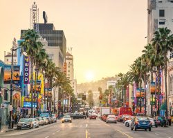 Why Young Professionals Are Moving to West Hollywood